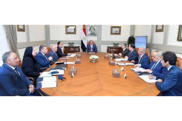 السيسي يناقش مع الحكومة توطين صناعة السيارات الكهربائية في مصر